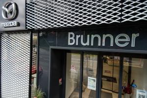 brunner 2016 16