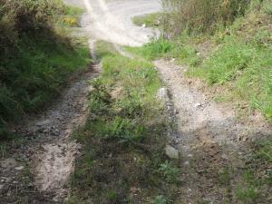 ISUZU OFF ROAD 091